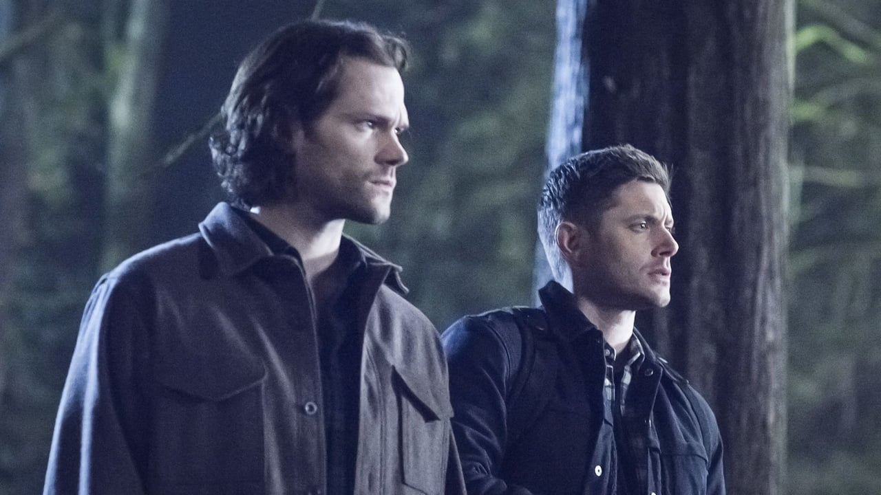 Supernatural Episode: Dont Go In The Woods