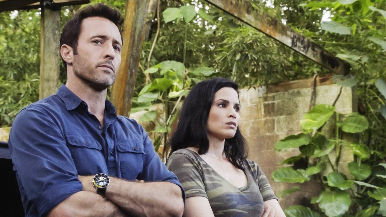 Hawaii Five0 Episode: E uhi ana ka wa i hala i na mea i hala Passing time obscures the past