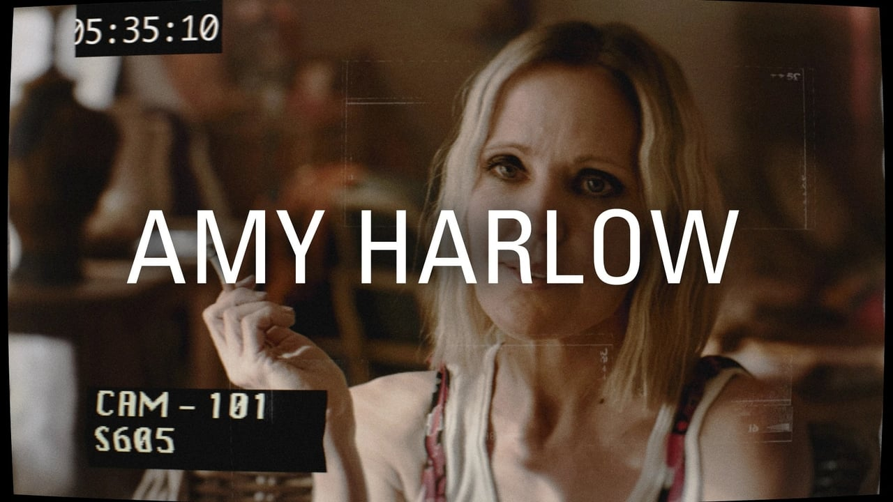 Interrogation Episode: PI Charlie Shannon vs Amy Harlow 2003