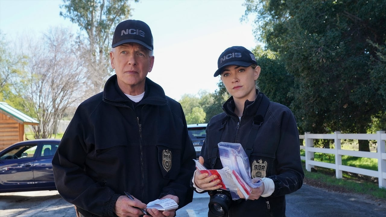 NCIS Episode: In a Nutshell