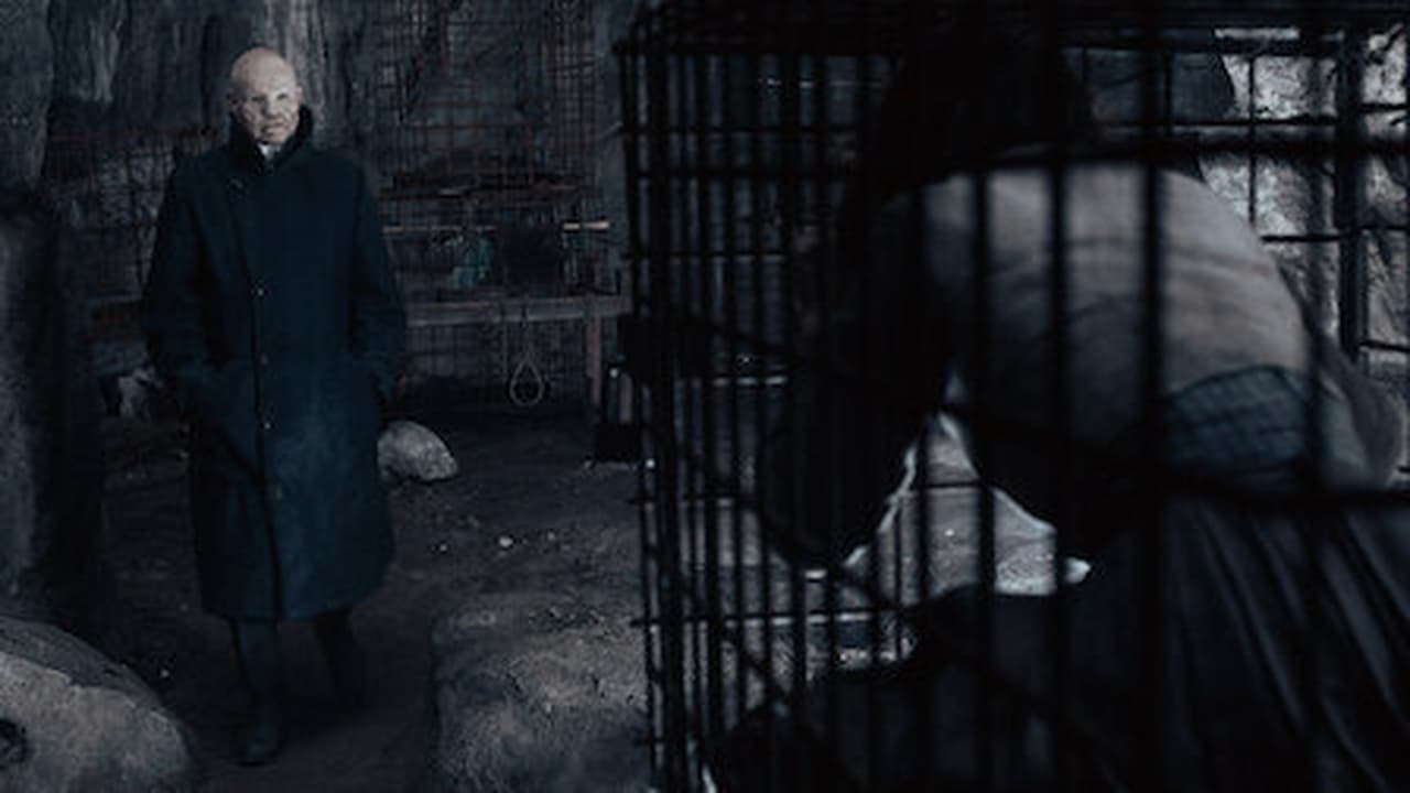 Dark Episode: Light and Shadow