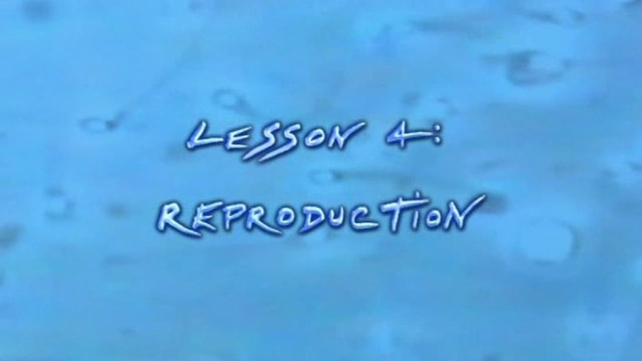 Anatomy for Beginners Episode: Reproduction