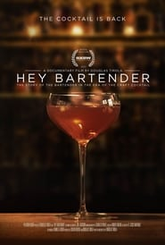 Streaming sources for Hey Bartender