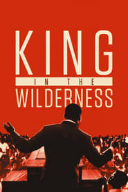 Streaming sources for King in the Wilderness