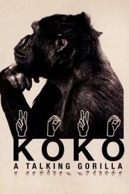 Streaming sources for Koko A Talking Gorilla
