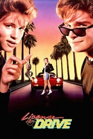 Streaming sources for License to Drive