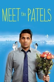 Streaming sources for Meet the Patels
