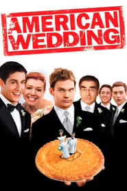 Streaming sources for American Wedding