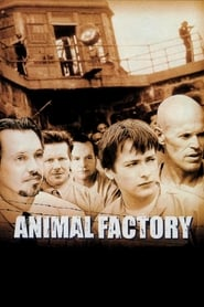 Streaming sources for Animal Factory