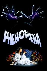 Streaming sources for Phenomena