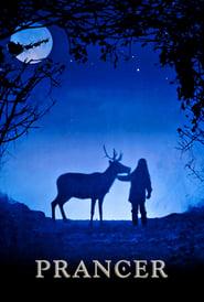 Streaming sources for Prancer