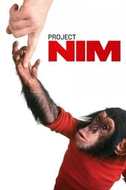 Streaming sources for Project Nim