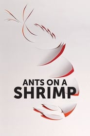 Streaming sources for Ants on a Shrimp
