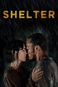 Streaming sources for Shelter