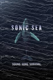 Streaming sources for Sonic Sea