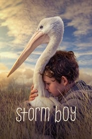 Streaming sources for Storm Boy