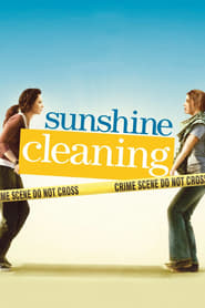 Streaming sources for Sunshine Cleaning