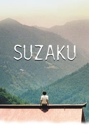 Streaming sources for Suzaku