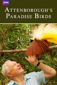 Streaming sources for Attenboroughs Paradise Birds