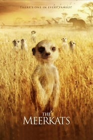 Streaming sources for The Meerkats