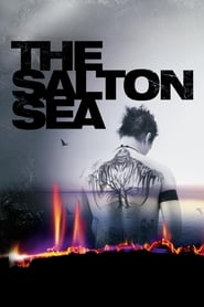 Streaming sources for The Salton Sea
