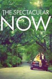 Streaming sources for The Spectacular Now