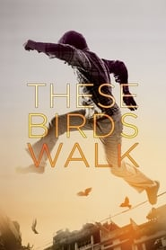 Streaming sources for These Birds Walk
