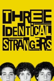 Streaming sources for Three Identical Strangers