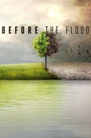 Streaming sources for Before the Flood