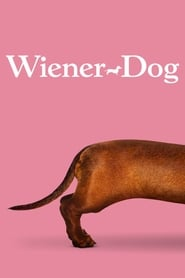 Streaming sources for WienerDog