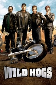 Streaming sources for Wild Hogs
