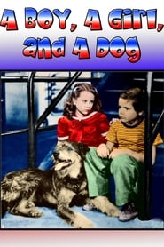 Streaming sources for A Boy a Girl and a Dog