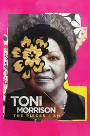 Streaming sources for Toni Morrison The Pieces I Am