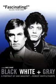 Streaming sources for Black White  Gray A Portrait of Sam Wagstaff and Robert Mapplethorpe