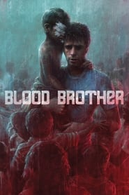 Streaming sources for Blood Brother