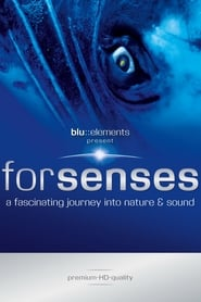 Streaming sources for Forsenses  A Fascinating Journey into Nature  Sound