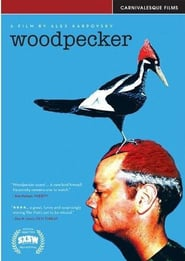 Streaming sources for Woodpecker