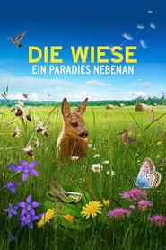 Streaming sources for Die Wiese Ein Paradies nebenan