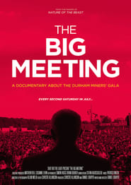 Streaming sources for The Big Meeting