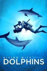 Streaming sources for Diving with Dolphins
