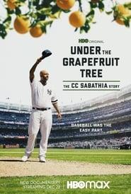 Under The Grapefruit Tree The CC Sabathia Story Poster
