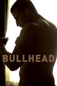 Streaming sources for Bullhead