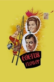 Streaming sources for Cactus Flower