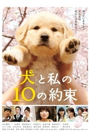 10 Promises to My Dog Poster