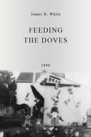 Streaming sources for Feeding the Doves