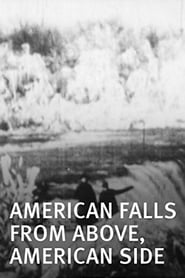 American Falls from Above American Side Poster