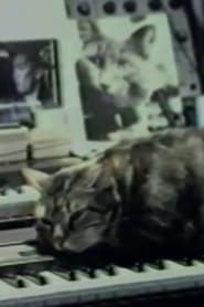 Streaming sources for Cat Listening to Music