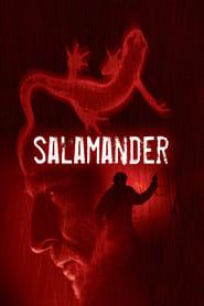 Streaming sources for Salamander