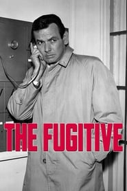 Streaming sources for The Fugitive