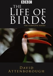 Streaming sources for The Life of Birds